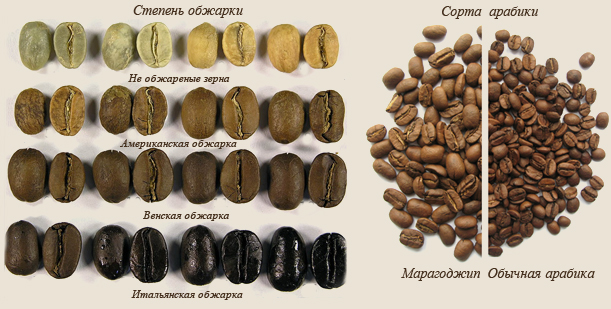 В мире известны около 14 степеней обжарки кофе